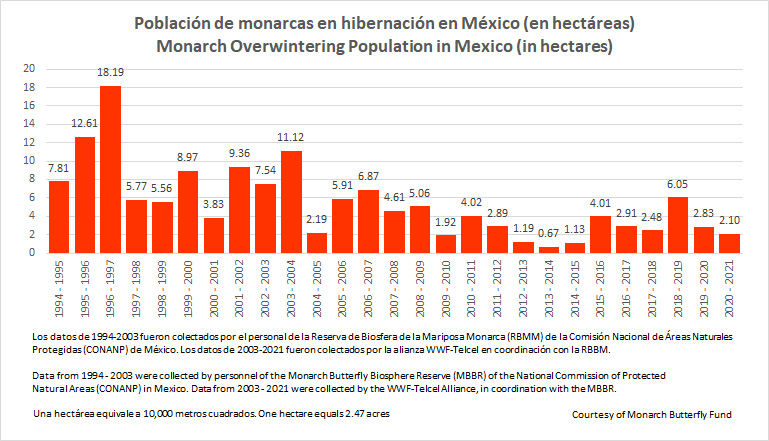 2020 to 2021 Mexico OW graph.jpg