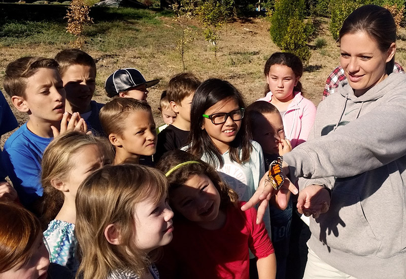 Third graders releasing tagged monarch, Mr. A2045. Recovered  382 miles away!