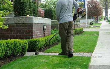 Lawn & Grass Dethatching in Medford Oregon