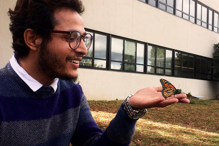 Sujan from Nepal looking at his first-ever monarch!