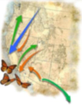 arrows with AZ sm.jpg