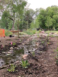 Creek sm.jpg