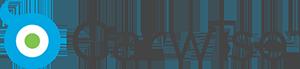 Carwise Logo sm.png