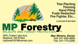 MP Forestry