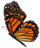Butterfly 1 smr.png
