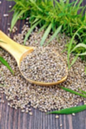 Seed Page Main Image.jpg