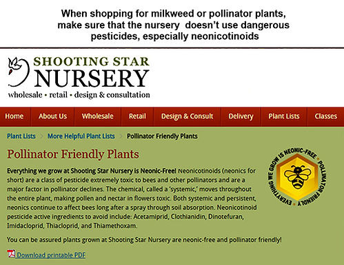 Shooting Star Nursery.jpg