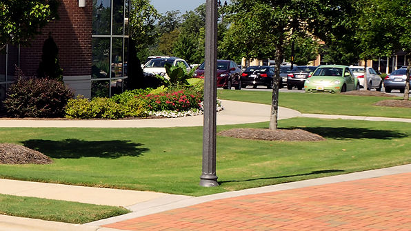 Lawn Mowing Image.jpg