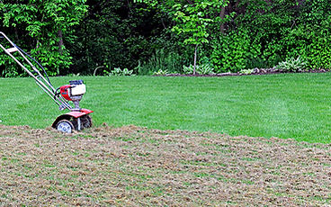 Lawn & Grass Dethatching in medford, ashland, jacksonville, eagle point, central point oregon