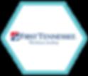 First TN 2 - DIAMOND_Logo.png