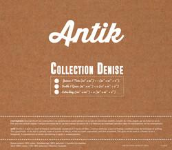 insertion-denise-2