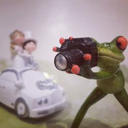 Weddingphototime