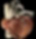Icono corazon 1.png