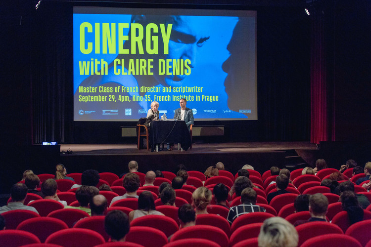 Claire Denis sirsi vyber-26.jpg