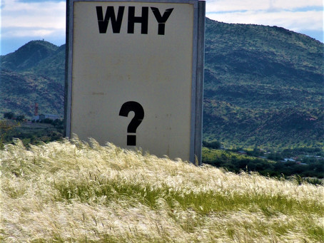 The Why of Motivation
