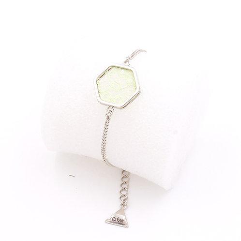 Vert clair / Argent