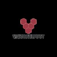 Logos of sponsors (1).png