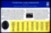 USCT Civil War Marker v1.jpg