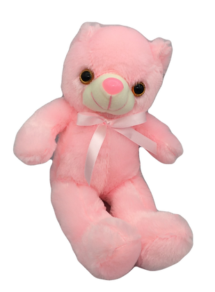Light Up Pink Teddy Bear