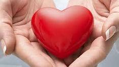 heart in hands'.jpg