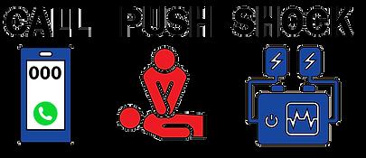 Call Push Shock Logos_website logo_V2_trans bg.png