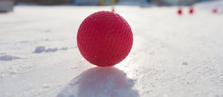 Фоторепортаж от Дмитрия Икунина с тренировки 16 января