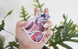 Hoje eu acordei com o coração na mão___