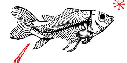peixe.jpg