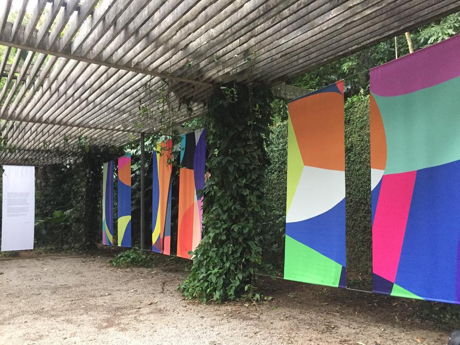 Golpe de Vista, 2018
