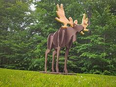 6' Tall Brown Moose