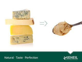 Naturally Fermented Cheese concentrates