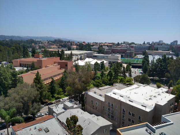 A view of UCLA campus from HHH rooftop