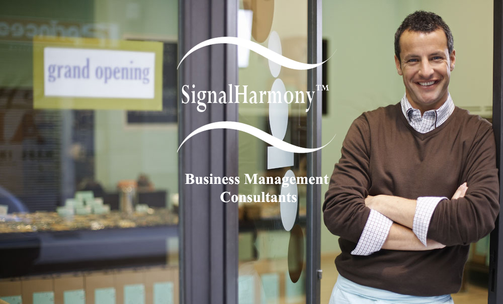 Business Consulting Services | Palmdale | SignalHarmony