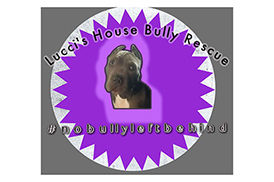Lucci's House Bully Rescue