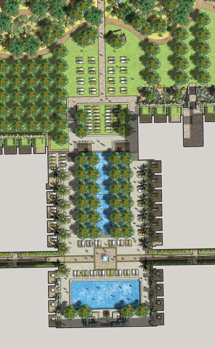 Adult Pool Plan