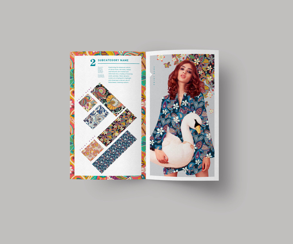 bifold-brochure-mockup_2_spread.jpg