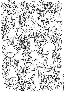 2020-08-Savanna Rawson-Mushroom-colourin