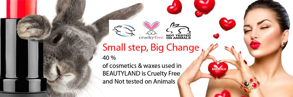 WILLENHALVEGAN CURETLY FREE NOT TESTEN O