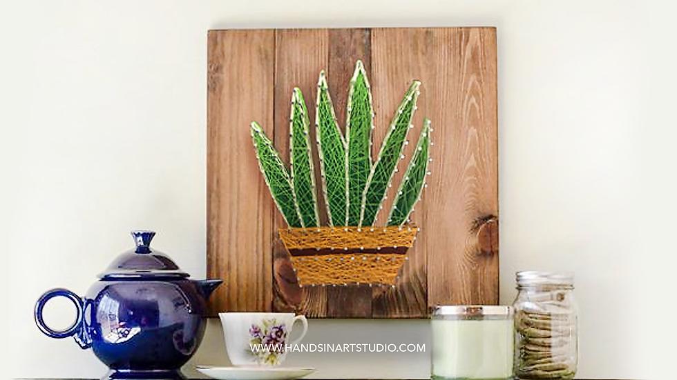 Succulent String Art Kit