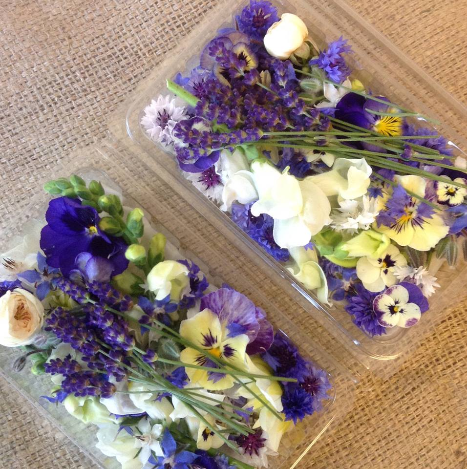edible flowers2