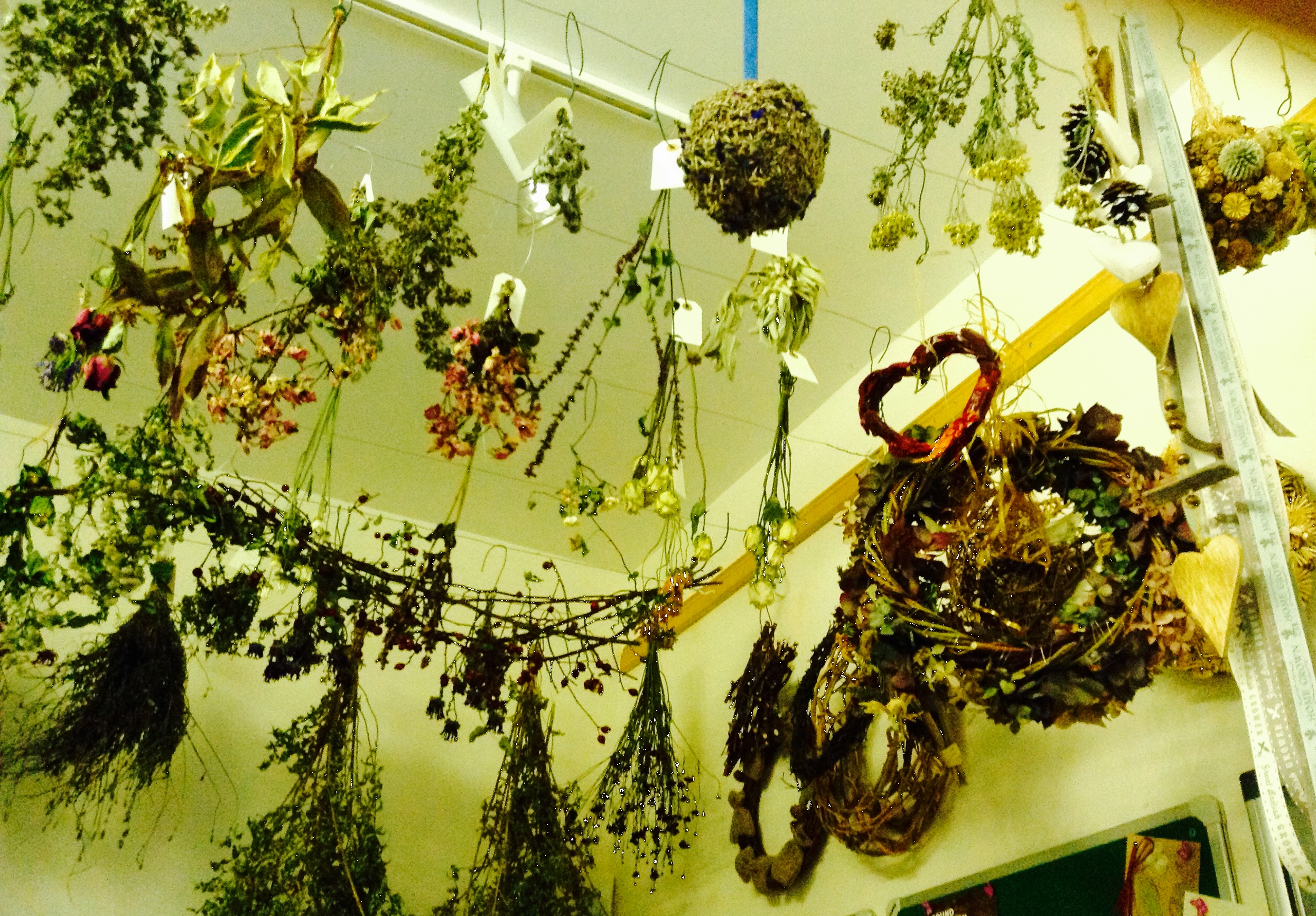 flowers drying1 dec14