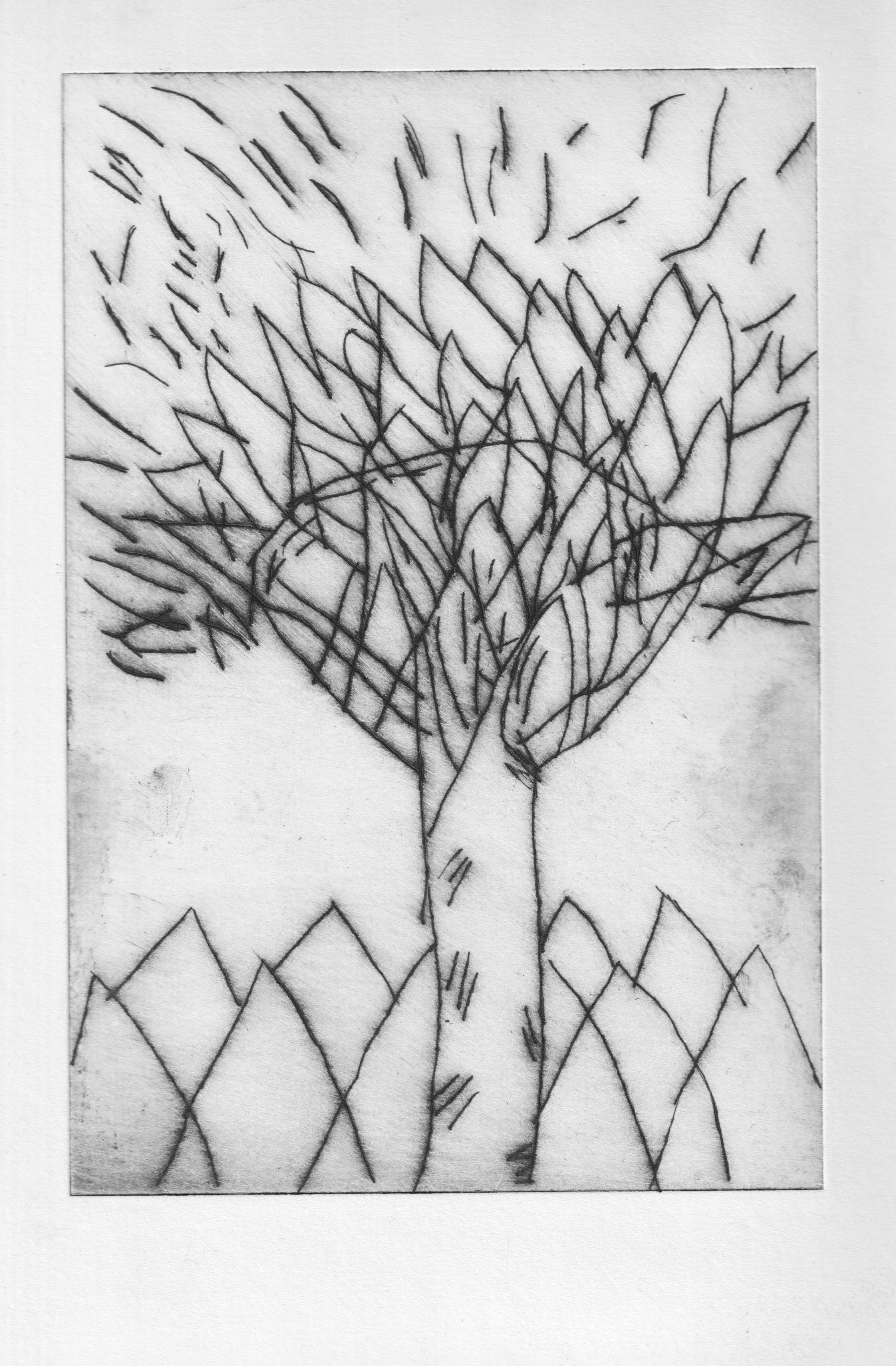 TreeofLife_ 12