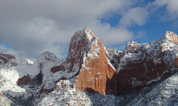 Frosted Kolob