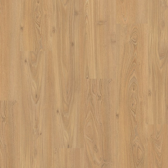 Acacia - CLASSIC   CL1050