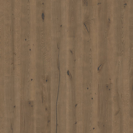 Dark Chocolate Oak Extra Matt Oiled - MASSIMO | MAS3564S - VIBRANT