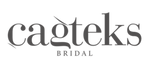 cagteks logo.png