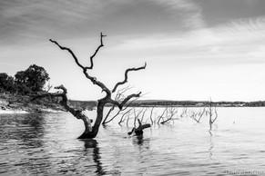 Canyon Lake, TX
