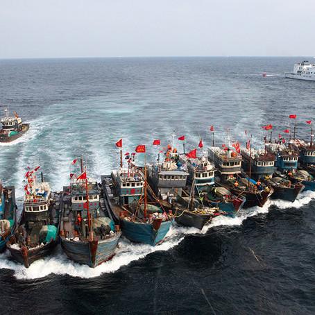 Warum illegale Fischerei so ein großes Problem darstellt