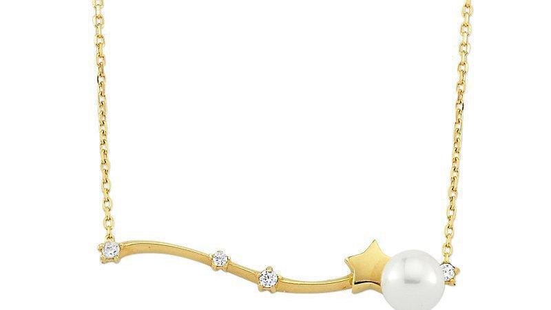 Yıldızlı Çubuk Gümüş Kolye