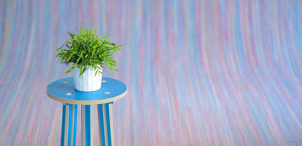 plant-2954365_1920_edited_edited.jpg